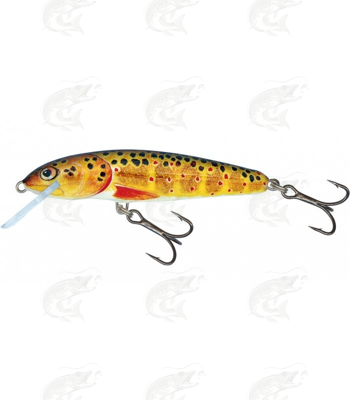 Salmo Minnow | color T