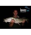 Lovec-Rapy Barbel