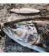 Sven Laanet's handmade lures for seatrout