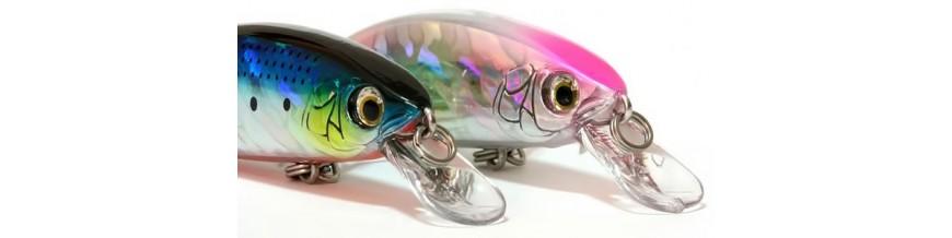 Fishing Lures | Fishing Bait & Lures